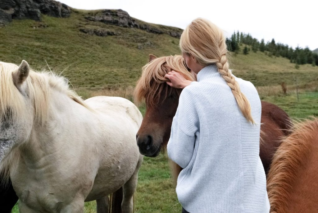 Woman stroking a horse, standing between more horses